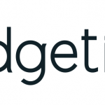 Logo de Budget insight